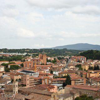 Barrel Aged Balsamic Vinegar: Modena Magic